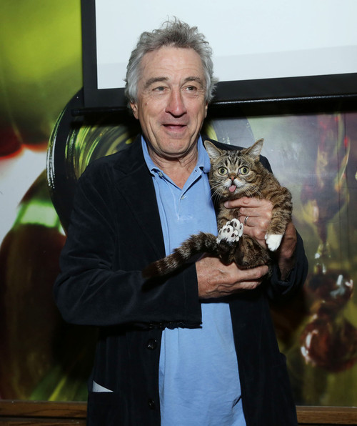 Lil Bub with Robert De Niro