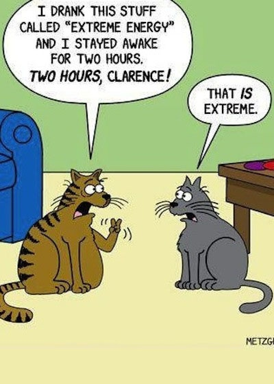 Cats pictures: Extreme energy