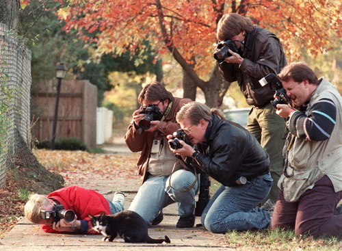 Socks, Bill Clinton's cat, being hounded by the paparazzi