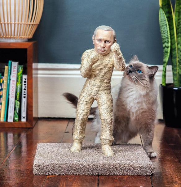 Putin And Kim Jong-Un Become Cat Scratching Posts